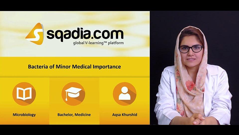Foytw6lqeeazrbgxkml8 180419 s0 khurshid aqsa bacteria of minor medical importance intro