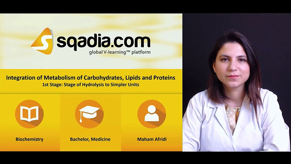Sqadia Integration Of Metabolism Of Carbohydrates Lipids And
