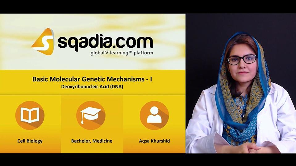 Gph9w95iqj278qaaek2i 180503 s1 khurshid aqsa deoxyribonucleic acid dna