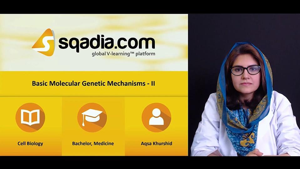 Vovop8msrqqydjdqztwt 180503 s0 khurshid aqsa basic molecular genetics mechanism ii intro