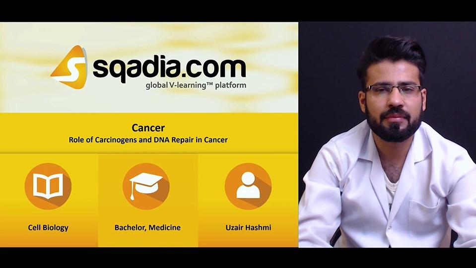 9mr0rupvs6ohlspor2ek 180505 s5 hashmi uzair role of carcinogens and dna repair in cancer