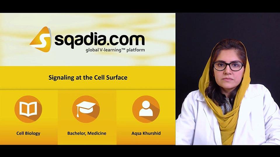 Jsradbqasqewvs8c2wow 180515 s0 khurshid aqsa signaling at the cell surface intro