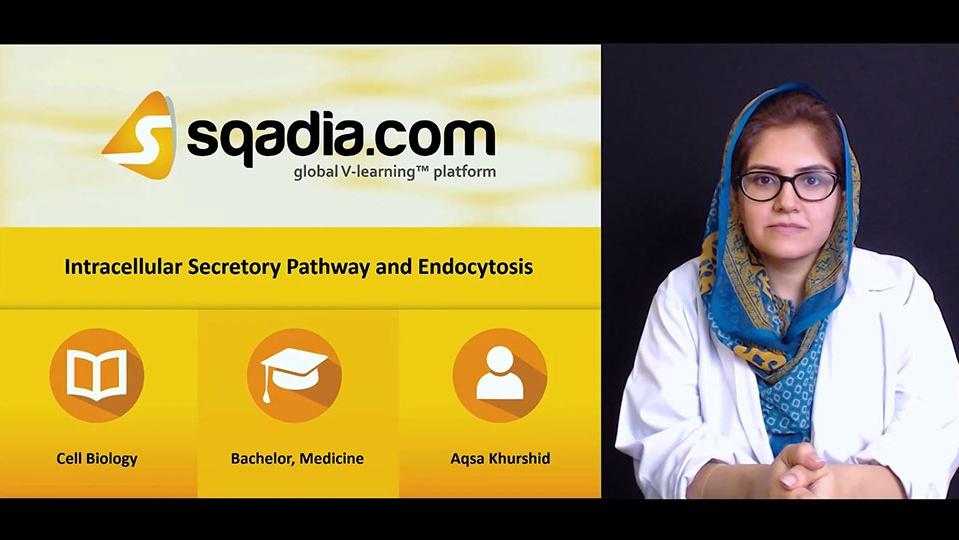 Ujplusq0szwrrte9hqwo 180614 s0 khurshid aqsa intracellular secretory pathway and endocytosis intro