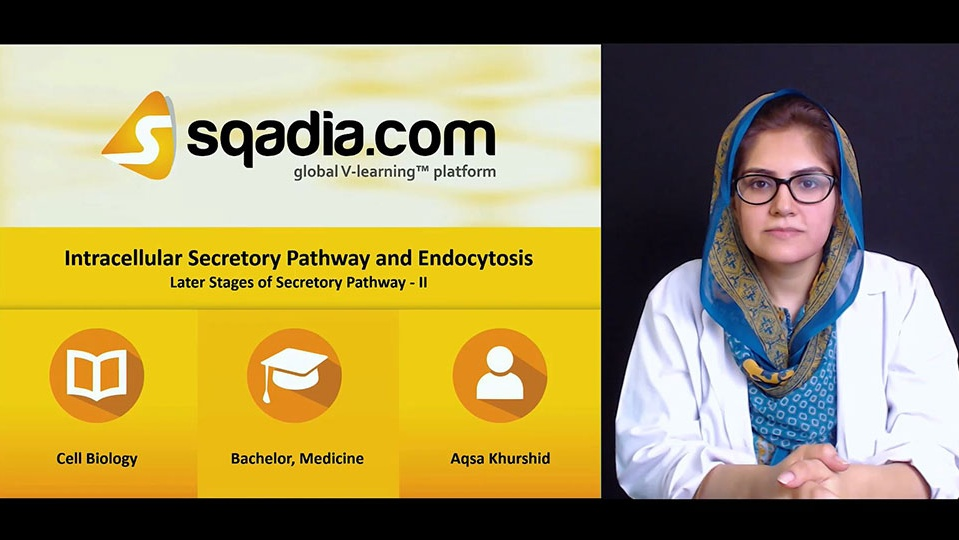 Wsok2d9ttfwqmafwakqi 180614 s2 khurshid aqsa later stages of secretory pathway ii