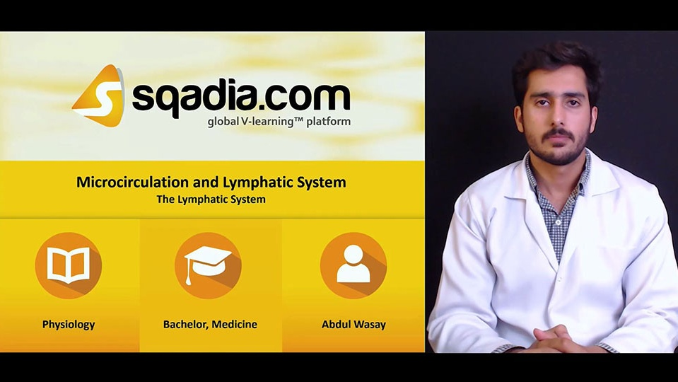 Babadqs96oztgzx537w6 180620 s5 wasay abdul the lymphatic system