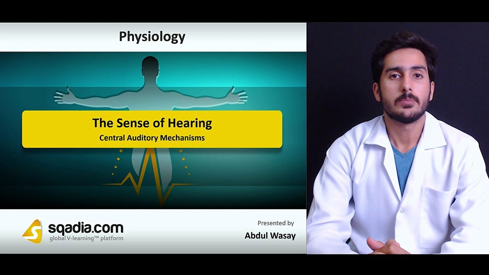 Frlkvftxswf9xkfsfixa 180627 s5 wasay abdul central auditory mechanisms