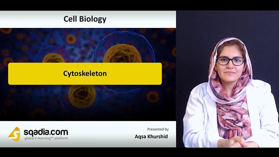 Oz9nzn20srkqmekzwre0 180705 s0 khurshid aqsa cytoskeleton intro