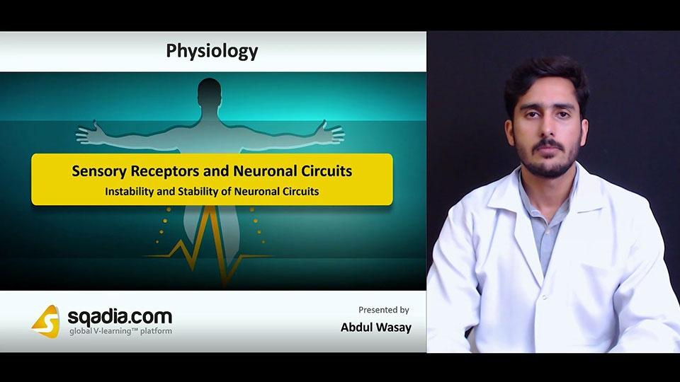 Ztpr7fcmrkcqehkijwk2 180711 s5 wasay abdul instability and stability of neuronal circuits
