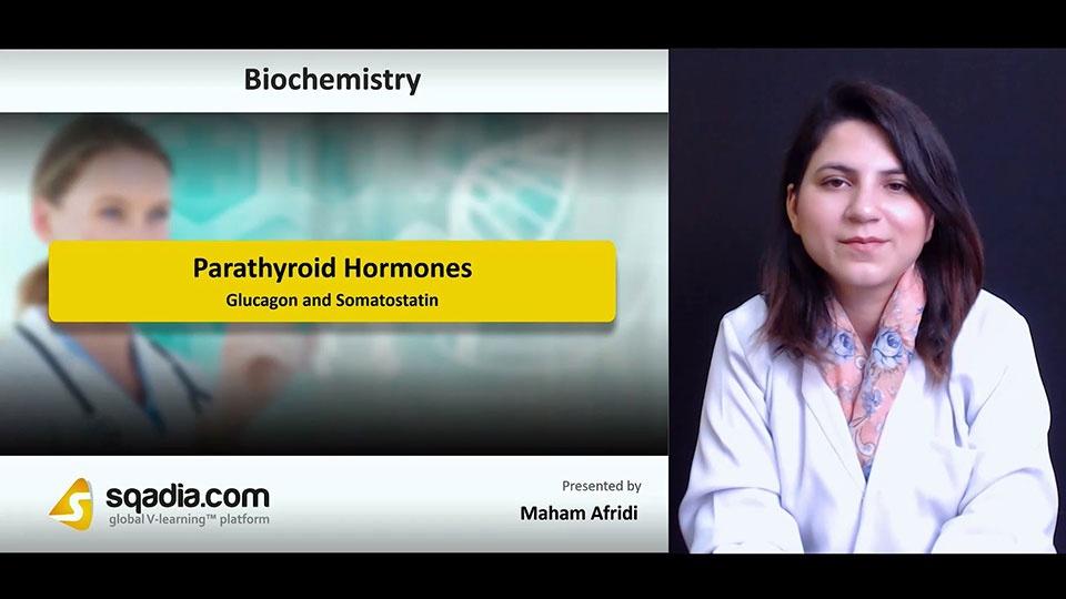 2ephwtd4sy50mlbbg3ea 180714 s5 afridi maham glucagon and somatostatin