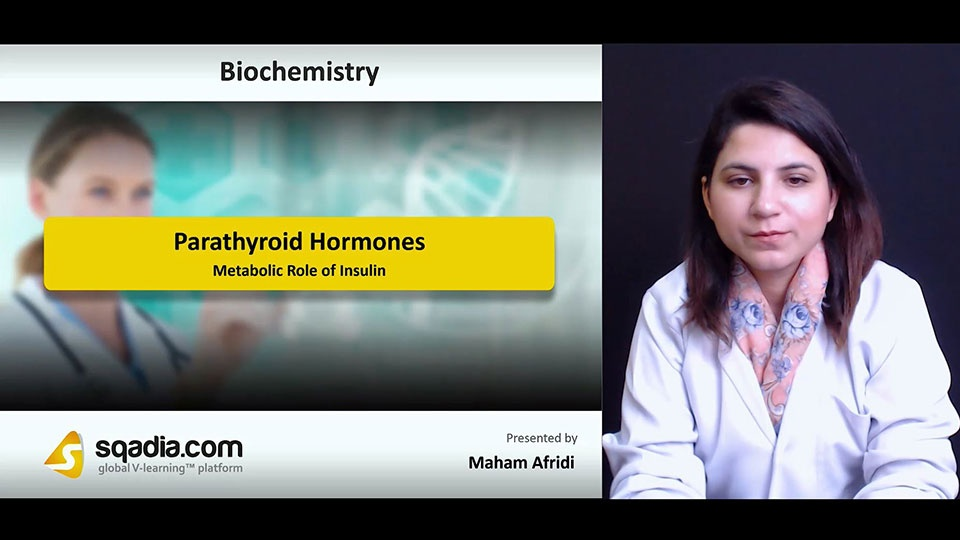 Dlnb6a4sa6fmxdnp5f5k 180714 s4 afridi maham metabolic role of insulin
