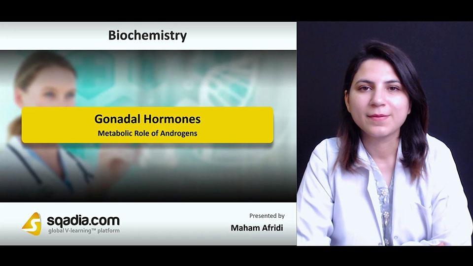 Ydnacvorhae5qgnrwbcv 180714 s2 afridi maham metabolic role of androgens