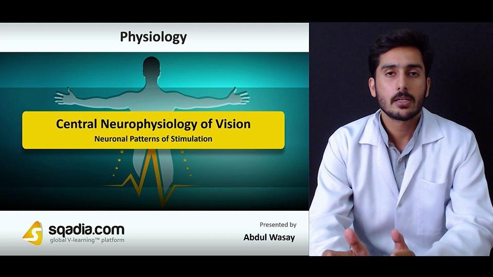 Pjgvzsgvt3cehglbibqa 180718 s4 wasay abdul neuronal patterns of stimulation