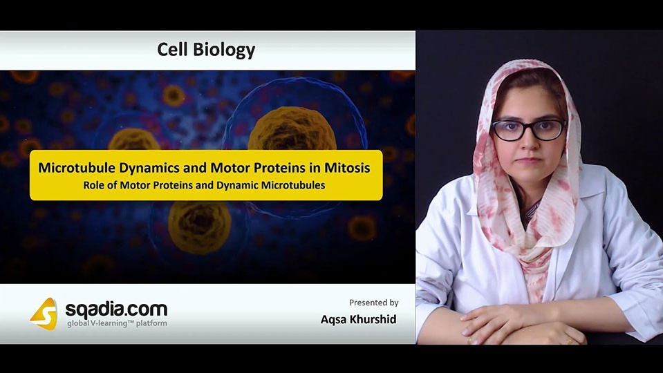 Pgbjndciqbi4onzqg40f 180719 s3 khurdhid aqsa role of motor proteins and dynamic microtubules
