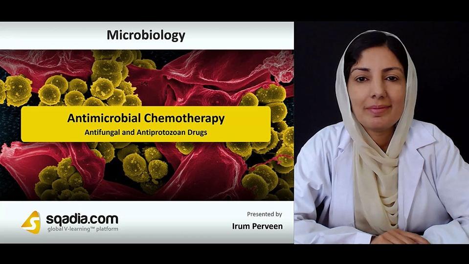 L2jvlgyptuezkrt4xgmx 180802 s5 perveen irum antifungal and antiprotozoan drugs