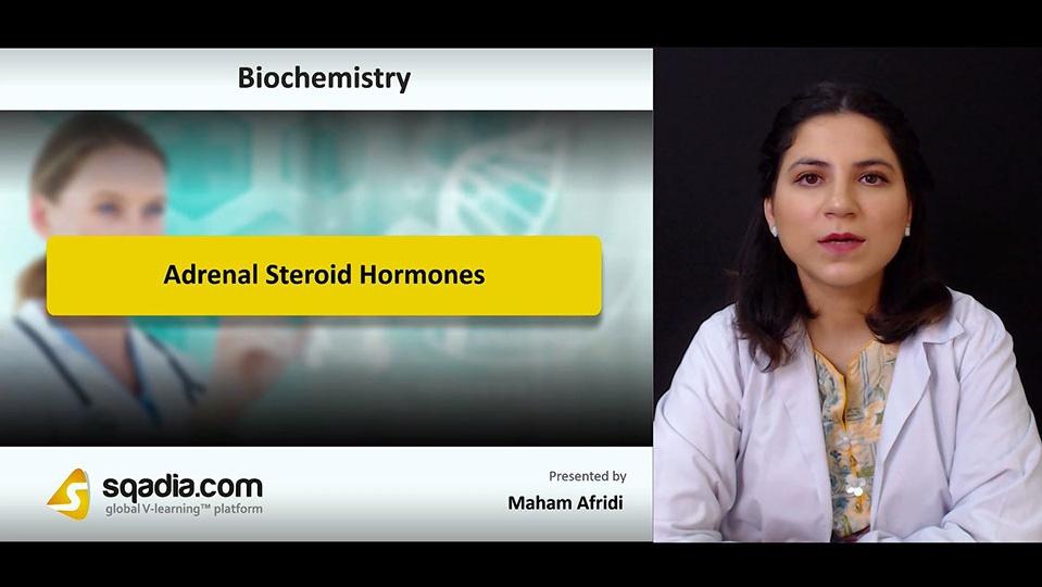 8z4o22mfqp6mt99ktlhf 180804 s0 afridi maham adrenal steroid hormones intro