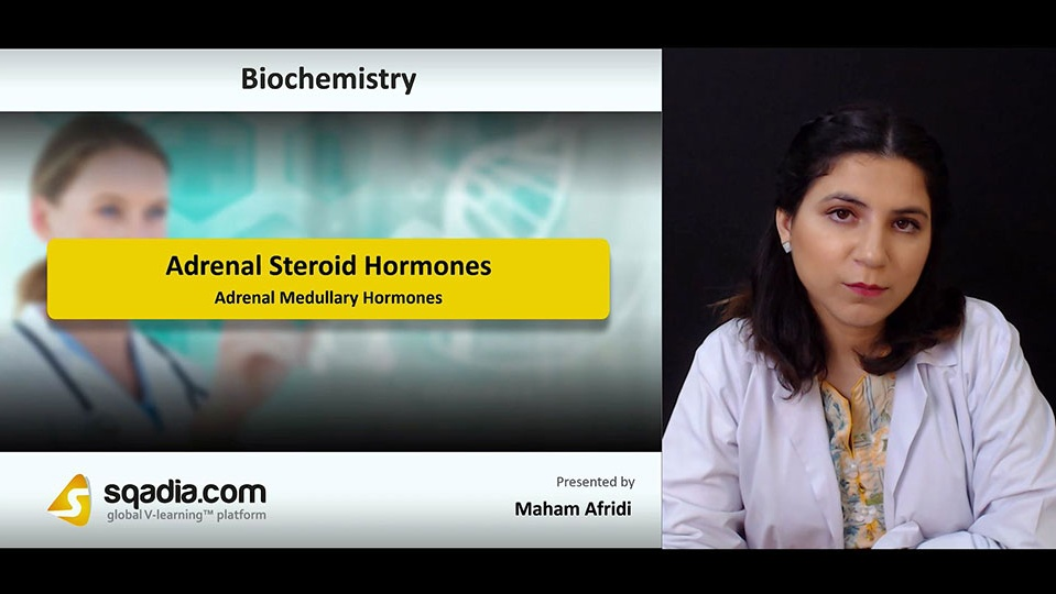 D6grkv3qau6ikav6lfjq 180804 s5 afridi maham adrenal medullary hormones