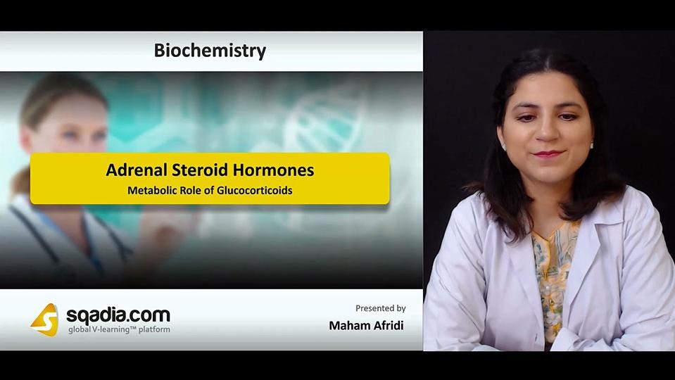 Lsjhwktdq3wuzxjhxexd 180804 s3 afridi maham metabolic role of glucocorticoids