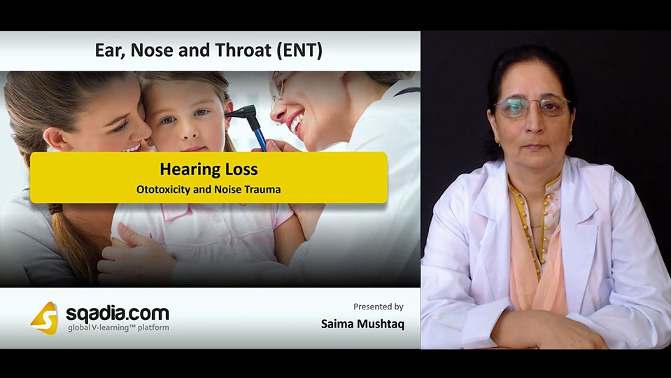 Wncdlik9sionte1g5mw9 180813 s3 mushtaq saima ototoxicity and noise trauma
