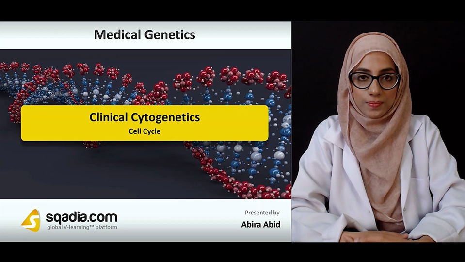 Wdtmcsvdt6mqxrpnujby 180817 s1 abid abira cell cycle