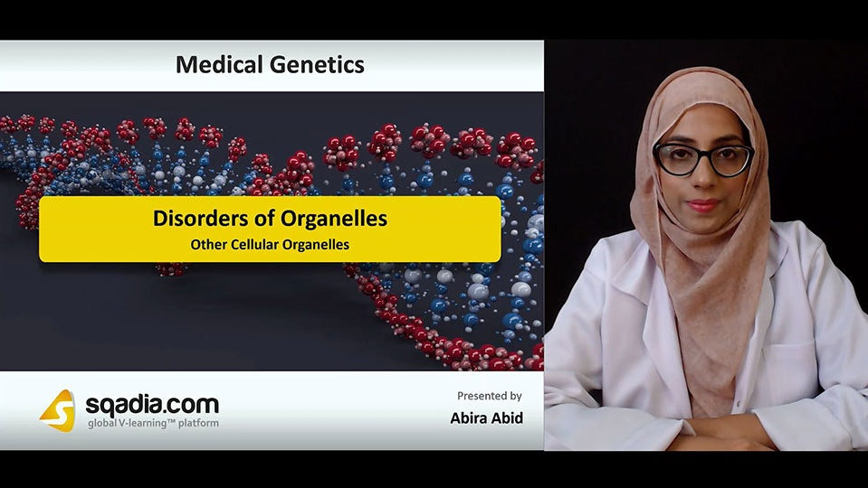 Gxdup87kthep7ojlj6uo 180817 s5 abid abira other cellular organelles