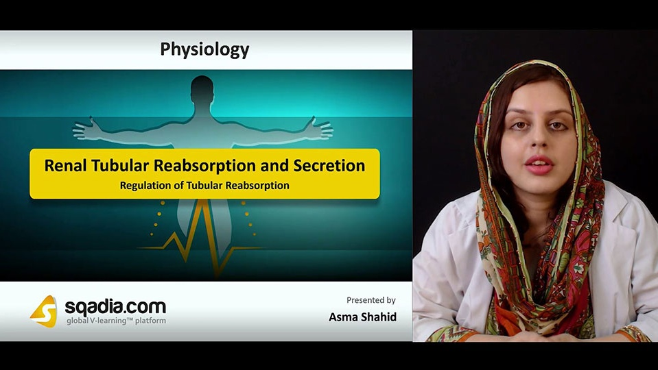 Vj92xytkriaot5gewqkq 180818 s4 shahid asma regulation of tubular reabsorption