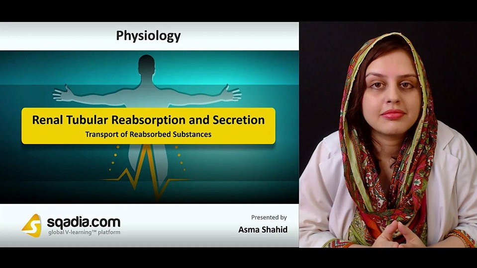 B1it297etakrvgr7pidj 180818 s1 shahid asma transport of reabsorbed substances