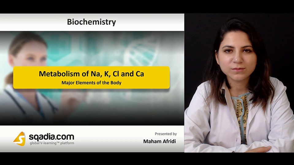 Xm5brwuxq5oxenqafimu 180818 s1 afridi maham major elements of the body