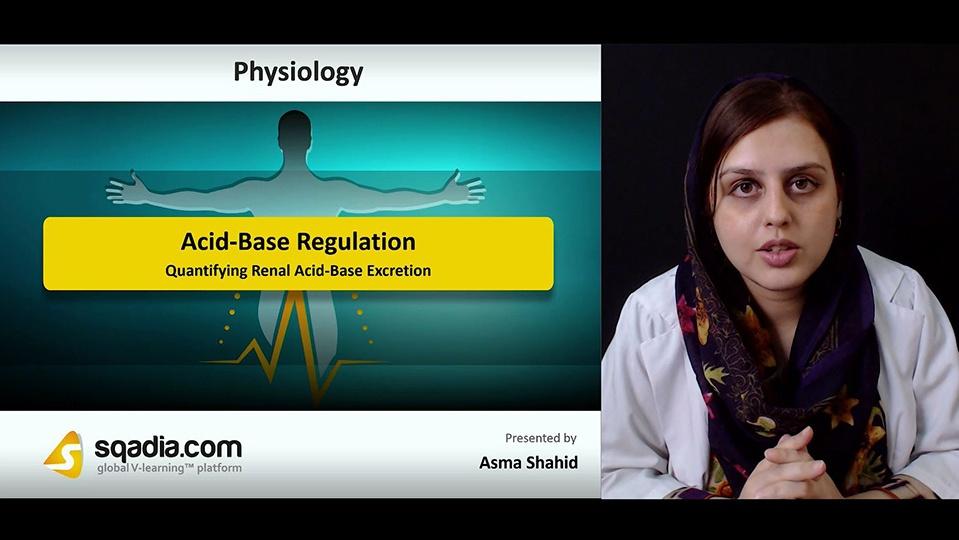 Q5dipfotqgvix1qfnwtg 180827 s4 shahid asma quantifying renal acid base excretion