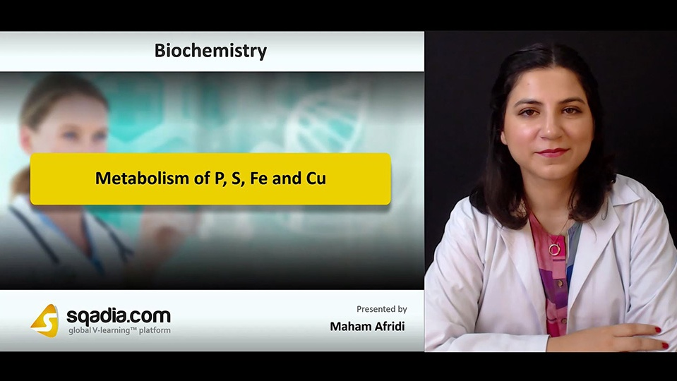 Udjnnsuqbqxuao3pbfga 180901 s0 afridi maham metabolism of p s fe and cu intro