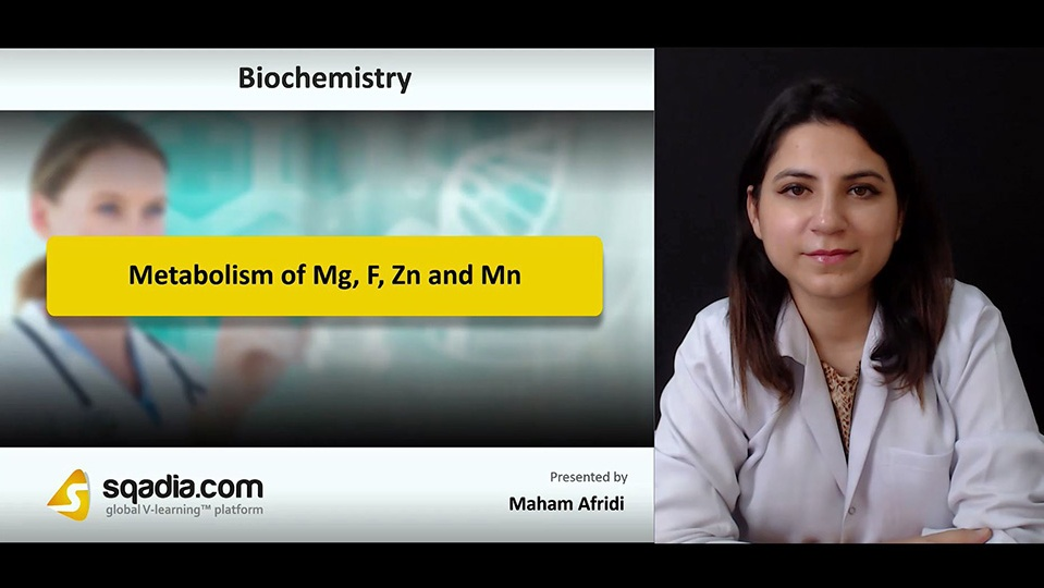 X3sawfrctzcaat2mp0jk 180906 s0 afridi maham metabolism of mg f zn and mn intro