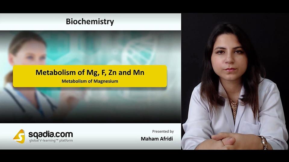 Wobs8chqych9o7sbidwc 180906 s1 afridi maham metabolism of magnesium