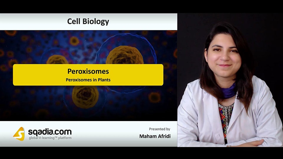 Data 2fimages 2falrqnmnwtbuy3vcy6o90 180915 s5 afridi maham peroxisomes in plants
