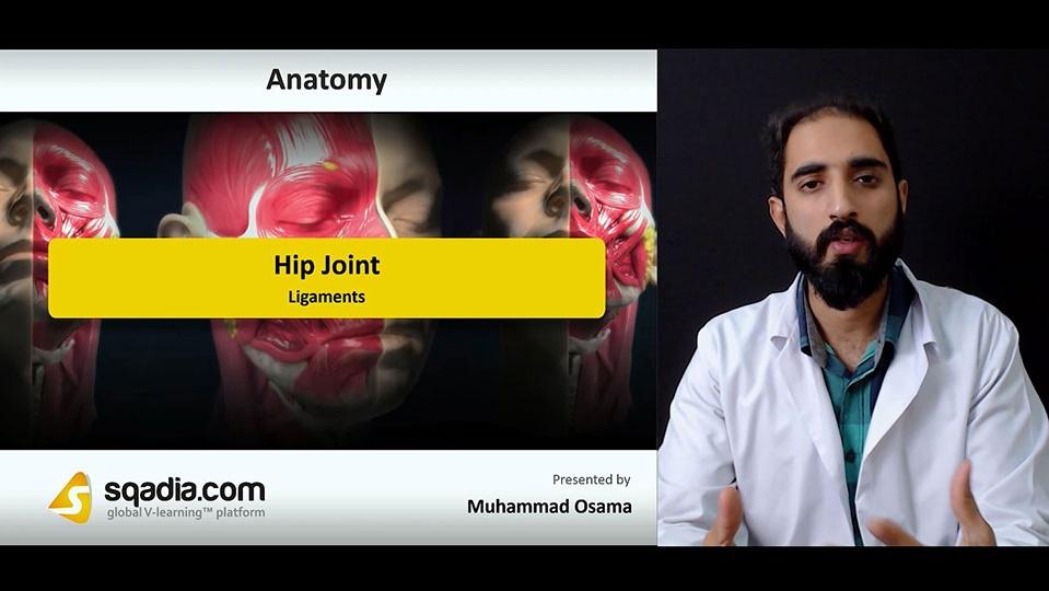 Data 2fimages 2f7o3gtrcsl25yh6xshami 180918 s4 osama muhammad ligaments