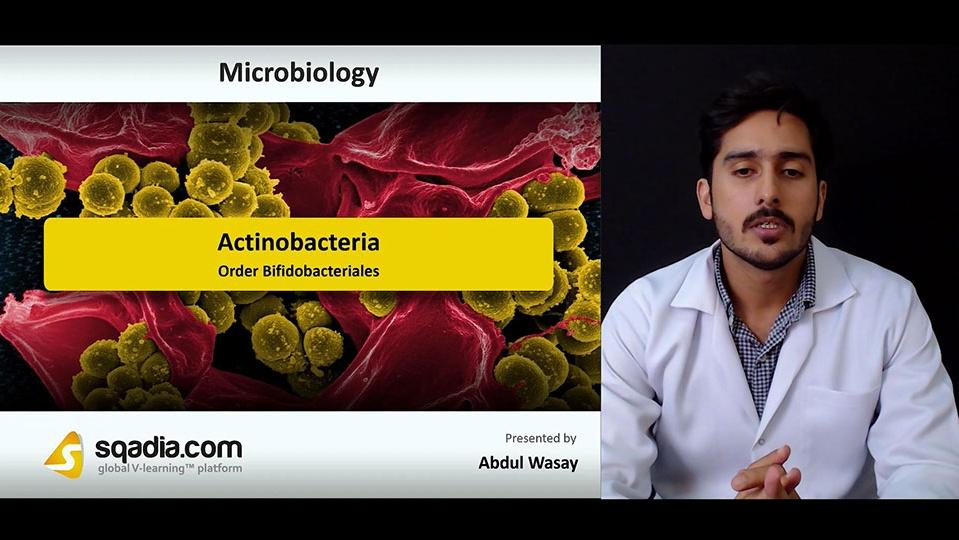 Data 2fimages 2fq3qymi8jrz23sgbah1fm 180926 s5 wasay abdul order bifidobacteriales