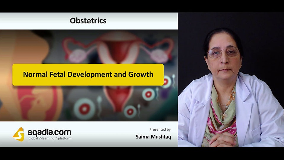 Data 2fimages 2fodjkqussqmpedjmpstgg 181004 s0 mushtaq saima normal fetal development and growth intro