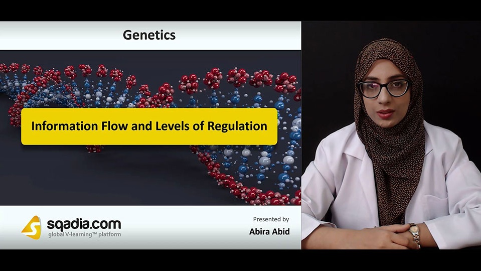 Data 2fimages 2f8couqjpkqzovcny4zzdv 181006 s0 abid abira information flow and levels of regulation intro