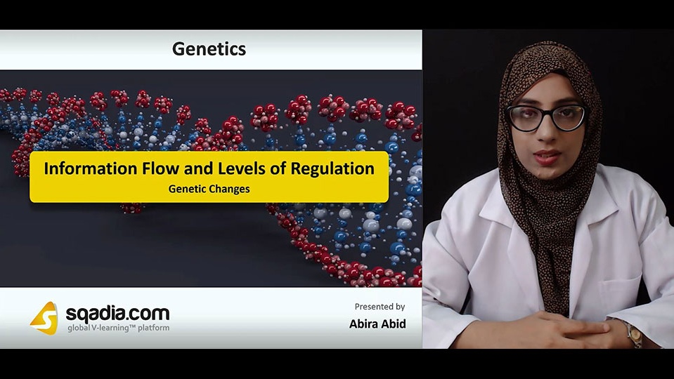 Data 2fimages 2ftyaeferssk1xjmks0gs8 181006 s4 abid abira genetic changes