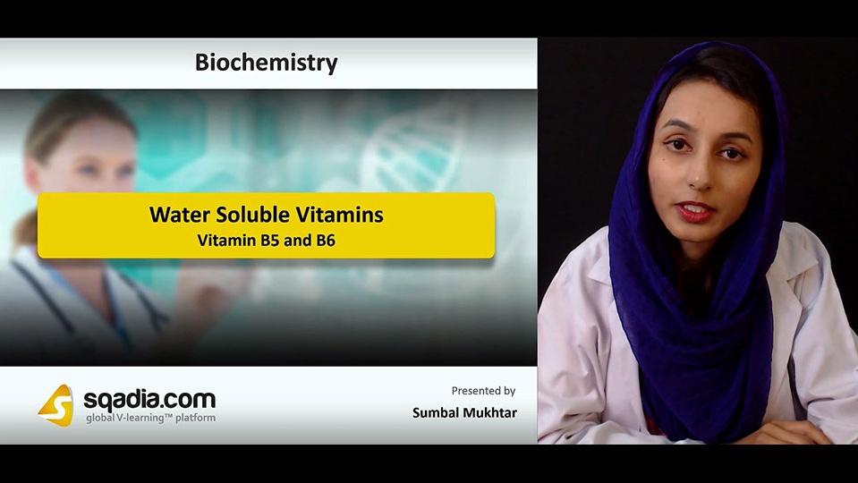 Data 2fimages 2fwydmksdqs2qxgxmuz7hb 181027 s3 mukhtar sumbal vitamin b5 and b6