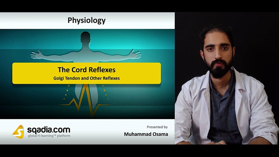 Data 2fimages 2fp4zoq0iisi5shwn174gh 181101 s4 osama muhammad golgi tendon and other reflexes