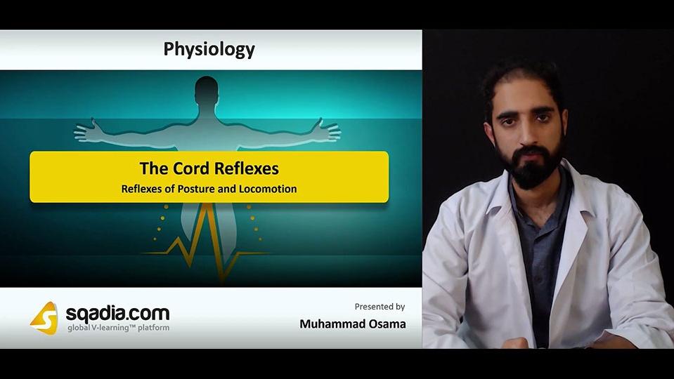 Data 2fimages 2fmdj5ze3sqqrvt4tfrpnq 181101 s5 osama muhammad reflexes of posture and locomotion