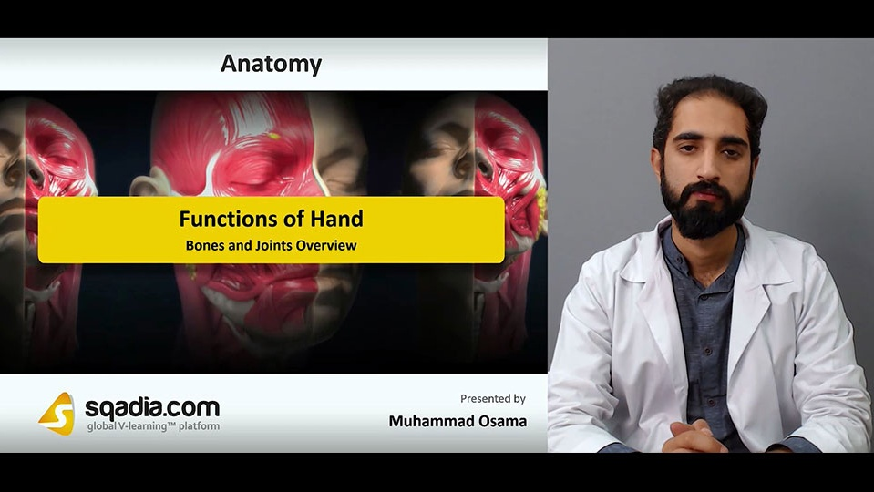 Data 2fimages 2fdzpoy9oqd6gwpmxraxr6 181122 s1 osama muhammad bones and joints overview