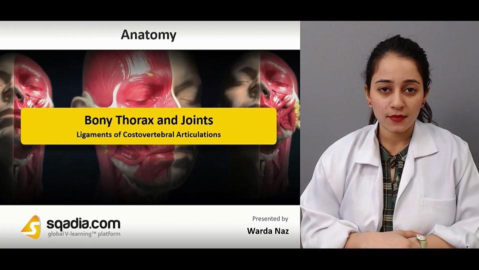 Data 2fimages 2fkh3qyegwtlwundjan4lj 181130 s5 naz warda ligaments of costovertebral articulations