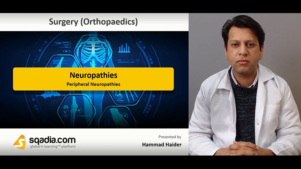 Data 2fimages 2frjz5jklfqpumqapolbla 190115 s1 haider hammad peripheral neuropathies