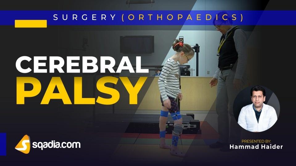 Data 2fimages 2fiqvcxd6lsdwfgk7wjasz 190122 s0 haider hammad cerebral palsy intro