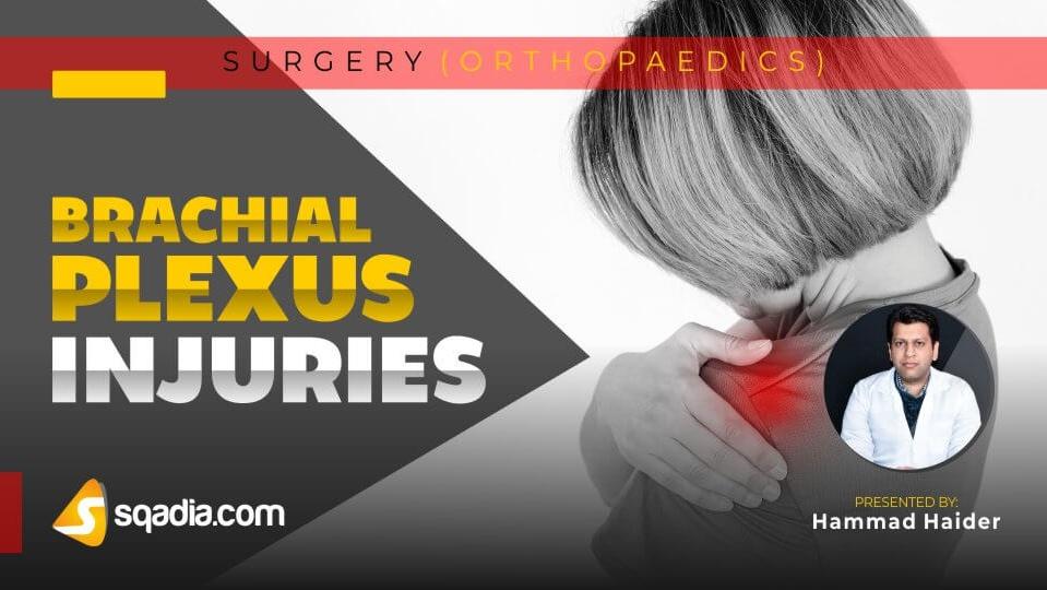 Data 2fimages 2fguosuklerqcwtjejblan 190208 s0 haider hammad brachial plexus injuries intro