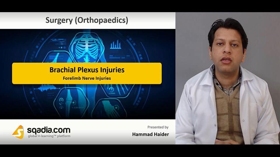 Data 2fimages 2ftjwwclm4qri5mppftyug 190208 s5 haider hammad forelimb nerve injuries