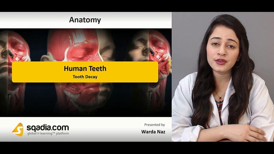 Data 2fimages 2f7qtnbprwqyosnd7qbgrm 190209 s4 naz warda tooth decay
