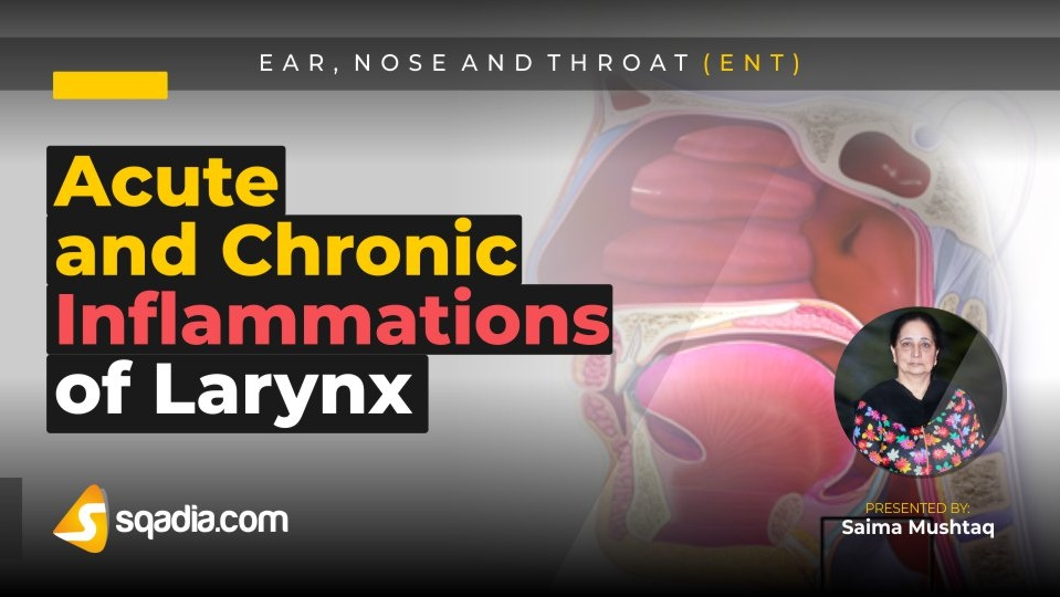 Data 2fimages 2favyk5nqq9gjhhpt8cdug 190211 s0 mushtaq saima acute and chronic inflammations of larynx intro