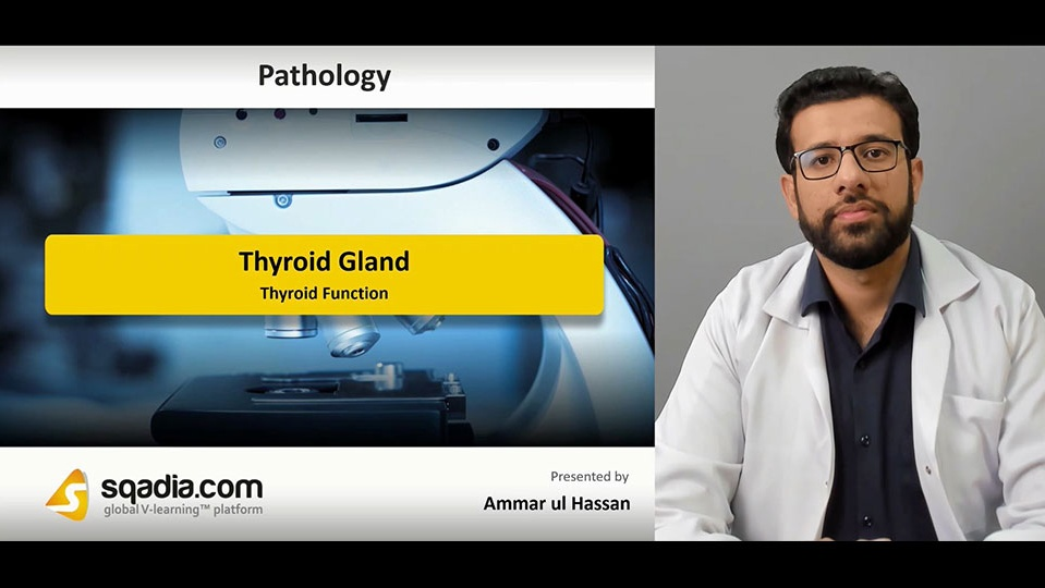 Data 2fimages 2f5gttzkrrqdguebcgce9w 190222 s1 hassan ammar thyroid function