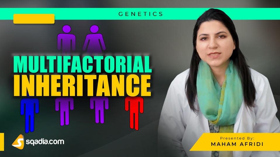 Data 2fimages 2fh2pkoez6thon8daabhgo 190223 s0 afridi maham multifactorial inheritance intro